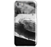 Black and White Crab Shell iPhone Case/Skin