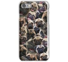 Pugs, not drugs iPhone Case/Skin