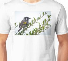 New Holland Honey eater at Gypsy Point Victoria Unisex T-Shirt