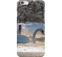 white swans on the frozen lake  iPhone Case/Skin