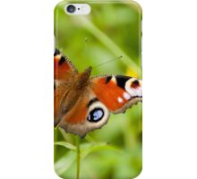 butterfly on a natural background iPhone Case/Skin