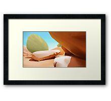Brandberg Mountain  Framed Print