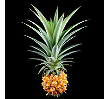 Tropical Pineapple Photographic Print