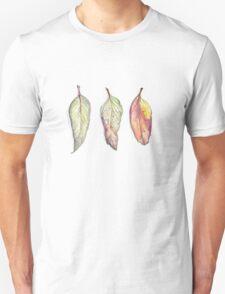 Autumn leaves - wild Australia T-Shirt