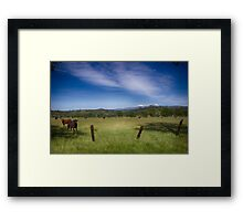 Happy Cows - Northern California Framed Print