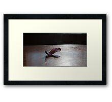 Yoga - Bhujangasana Framed Print