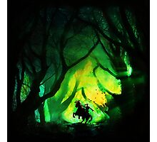 Into The Lost Woods Photographic Print