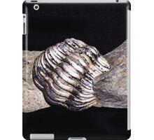 BW41 iPad Case/Skin