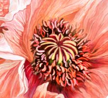 Big Peach Poppy 2 Sticker