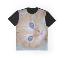 Orange Tabby Kitten Graphic T-Shirt