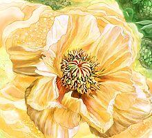 Big Yellow Poppy by Carol  Cavalaris