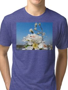 Spring flowers Tri-blend T-Shirt