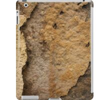 Flaky wall texture. Background. iPad Case/Skin