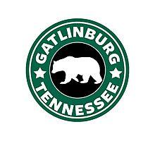 GATLINBURG TENNESSEE BEAR SMOKIES SMOKEY MOUNTAINS  Photographic Print