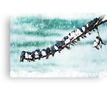 Swallows in a Spring Snowstorm  Canvas Print