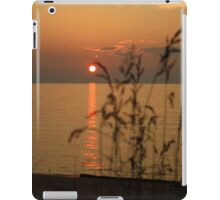 Glowing Grass iPad Case/Skin