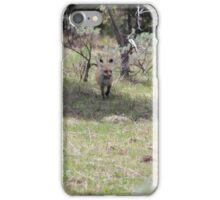 Fox Friend! iPhone Case/Skin
