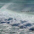 Waiting for the wave by Jan Pudney