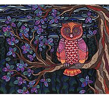 Psychedelic Owl Photographic Print
