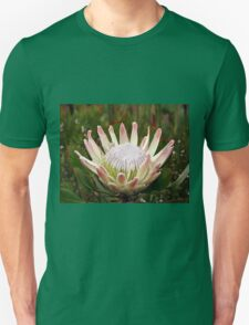 South African King Protea flower T-Shirt