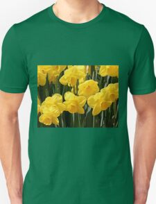 Yellow Daffodil flowers T-Shirt