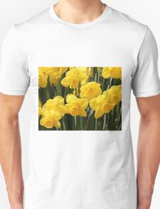 Yellow Daffodil flowers Unisex T-Shirt