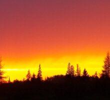 Striking Sunset Sticker