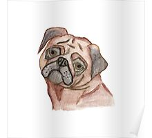 Cute Hand Painted Black Brown Watercolor Pug Dog Poster