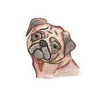 Cute Hand Painted Black Brown Watercolor Pug Dog Photographic Print