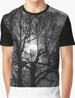 Sunshine Through The Trees Graphic T-Shirt