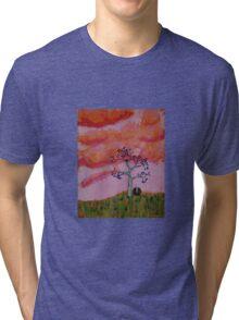 Nest at Sunset Tri-blend T-Shirt