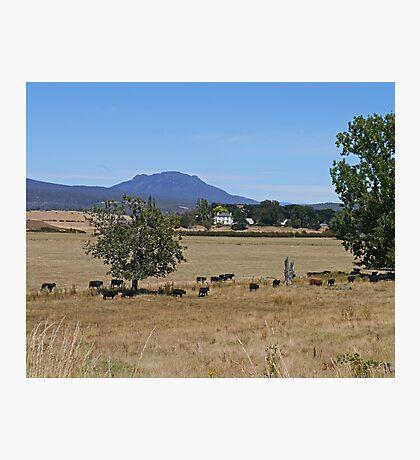 """Westfield"",  Westbury, Tasmania, Australia Photographic Print"