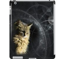 Pondering Cat iPad Case/Skin