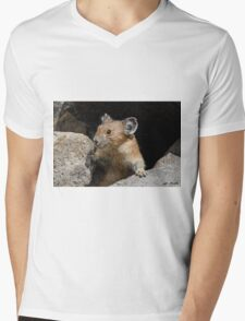 Pika Looking out from its Burrow Mens V-Neck T-Shirt