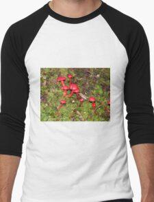 Rainforest Toadstools A Men's Baseball ¾ T-Shirt