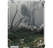 Fogscape iPad Case/Skin