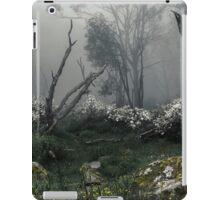 Fogscape iPad Case/Skin