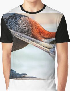 Pelican Itch Graphic T-Shirt