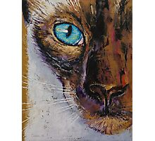 Siamese Cat Painting Photographic Print