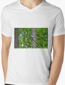 Blue Jay Mens V-Neck T-Shirt