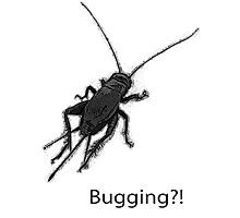 Bugging Photographic Print