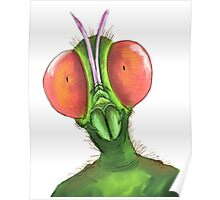 hello insect world Poster