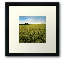 Two trees (day) Framed Print