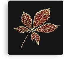 Red star leaft Canvas Print