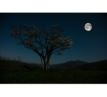 Moon Beams Photographic Print