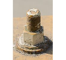 old rusty screw Photographic Print