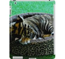 kitten iPad Case/Skin