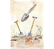 My Favourites (garden tools) Photographic Print