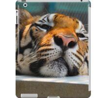 sleepy iPad Case/Skin