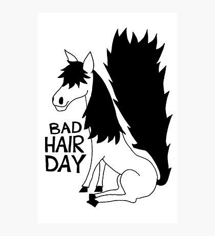 Bad Hair Day Horse Photographic Print